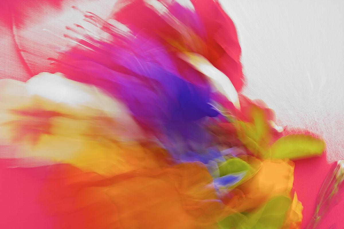 sb color splash.jpg
