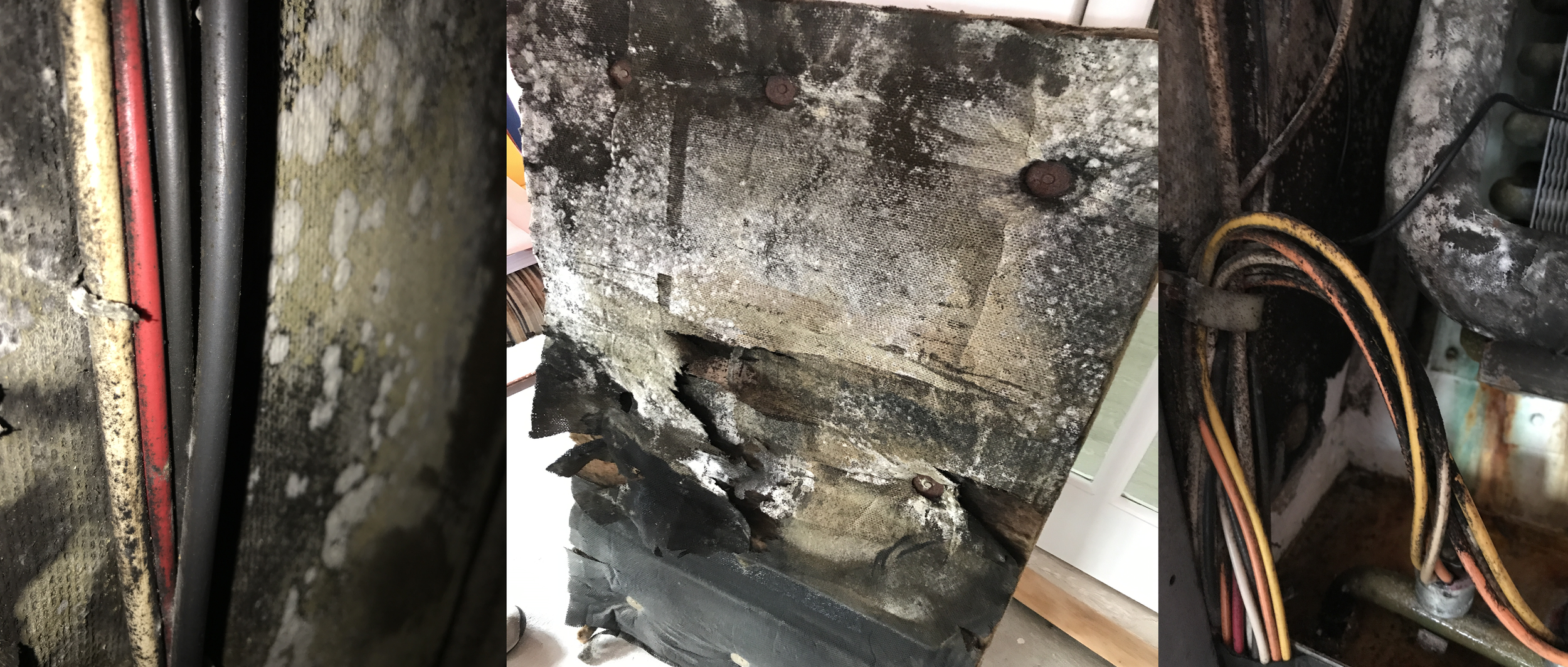 Actual examples of mold growth in clients fan coil units.
