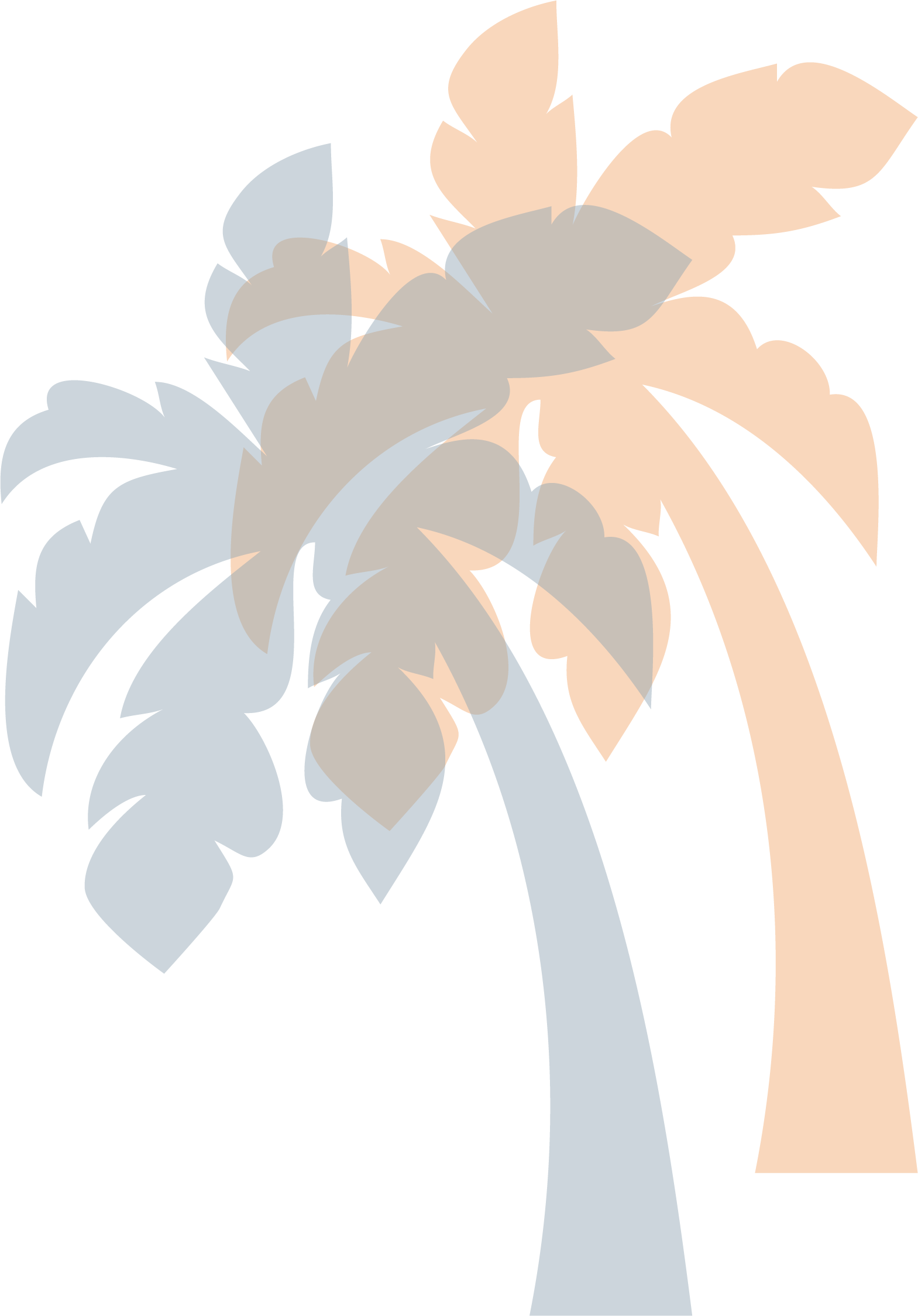 icon_palms_highres.png