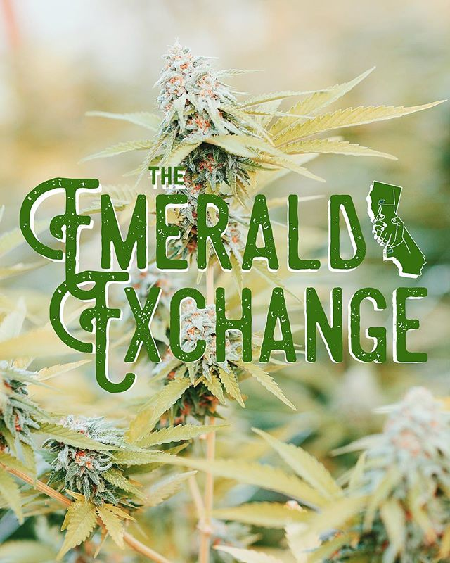 The Emerald Exchange is a community 🌿 We focus on maintaining the heart of this industry 💚 . . . . . . . #heart #community #love #family #cannabiscommunity #sun #emeraldexchange #nature #beauty #losangeles #mendocino #humboldt #cannabis #tradition #heritage