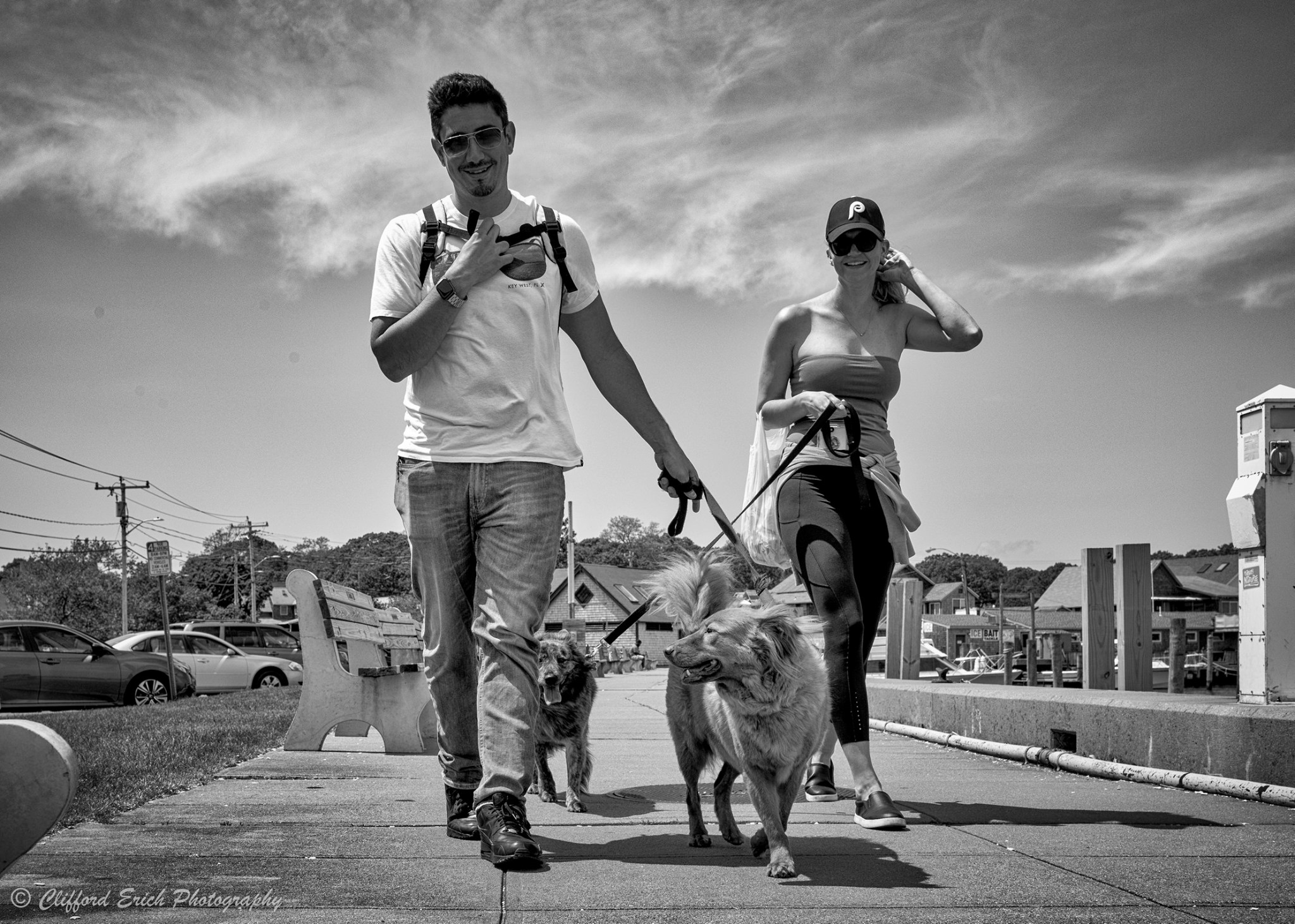 Dog Days 2.jpg