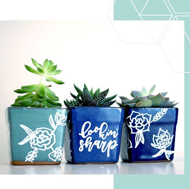 """to plant a garden is to believe in tomorrow"" 💙🌱 happy friday y'all 🥰 . . . #letterbstudio #customsucculents #crazyplantlady #succulentobsession #greenthumb #dallasplants #plantsmakepeoplehappy #mybeautifulmess"