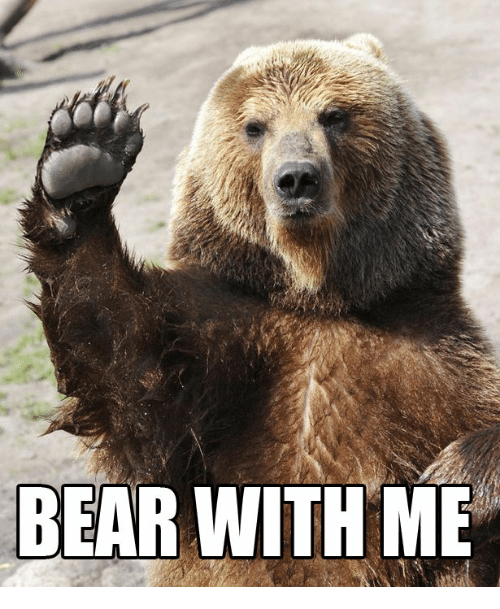 bear-with-me-31788393.png