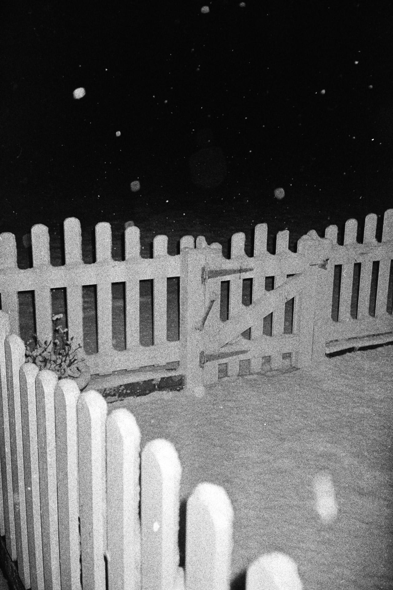 snow-9.jpg