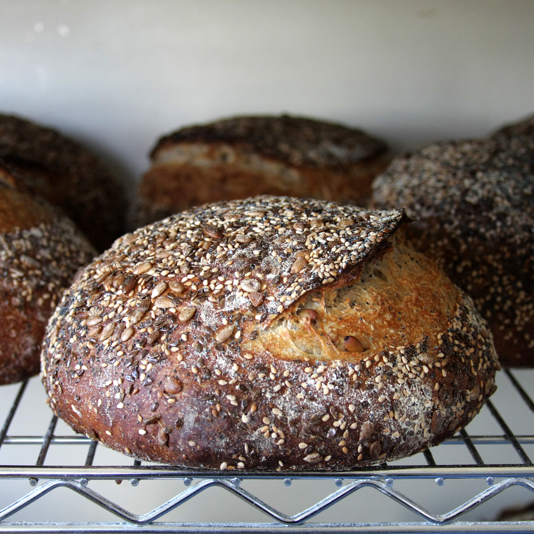Seeded Rye