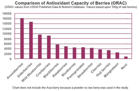 ORAC Berry Scale.png