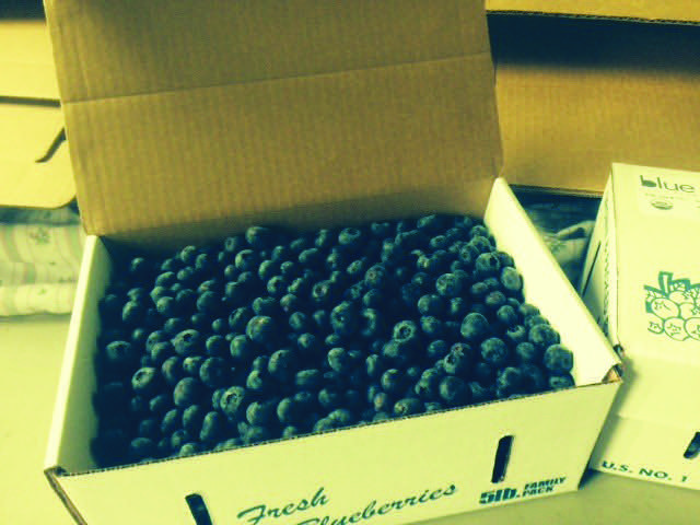 blueberry box lightened.jpg