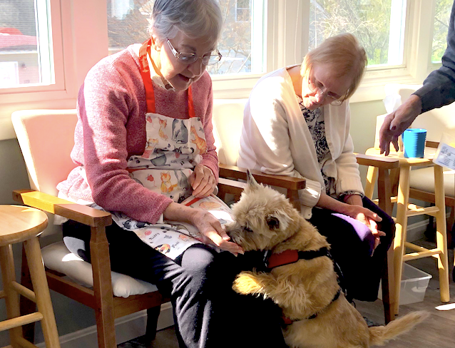Pleasantries Adult Day Services Pet Therapy