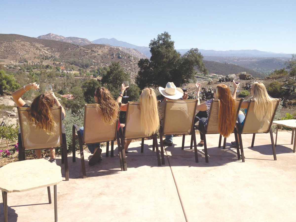 Photo Courtesy Of Turtle Rock Ridge Vineyard Winery