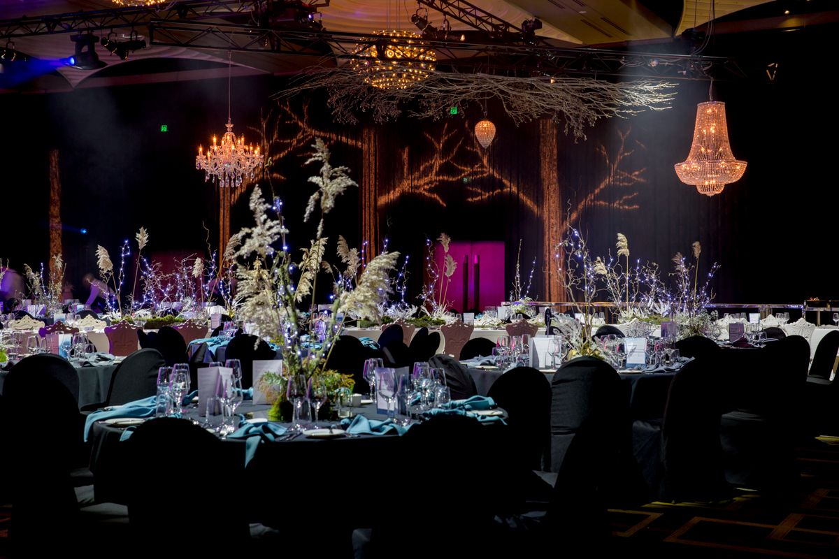 a surreal enchanted forest at the core of its theme that overtook Crown's Palladium. -