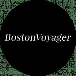voyager logo.png
