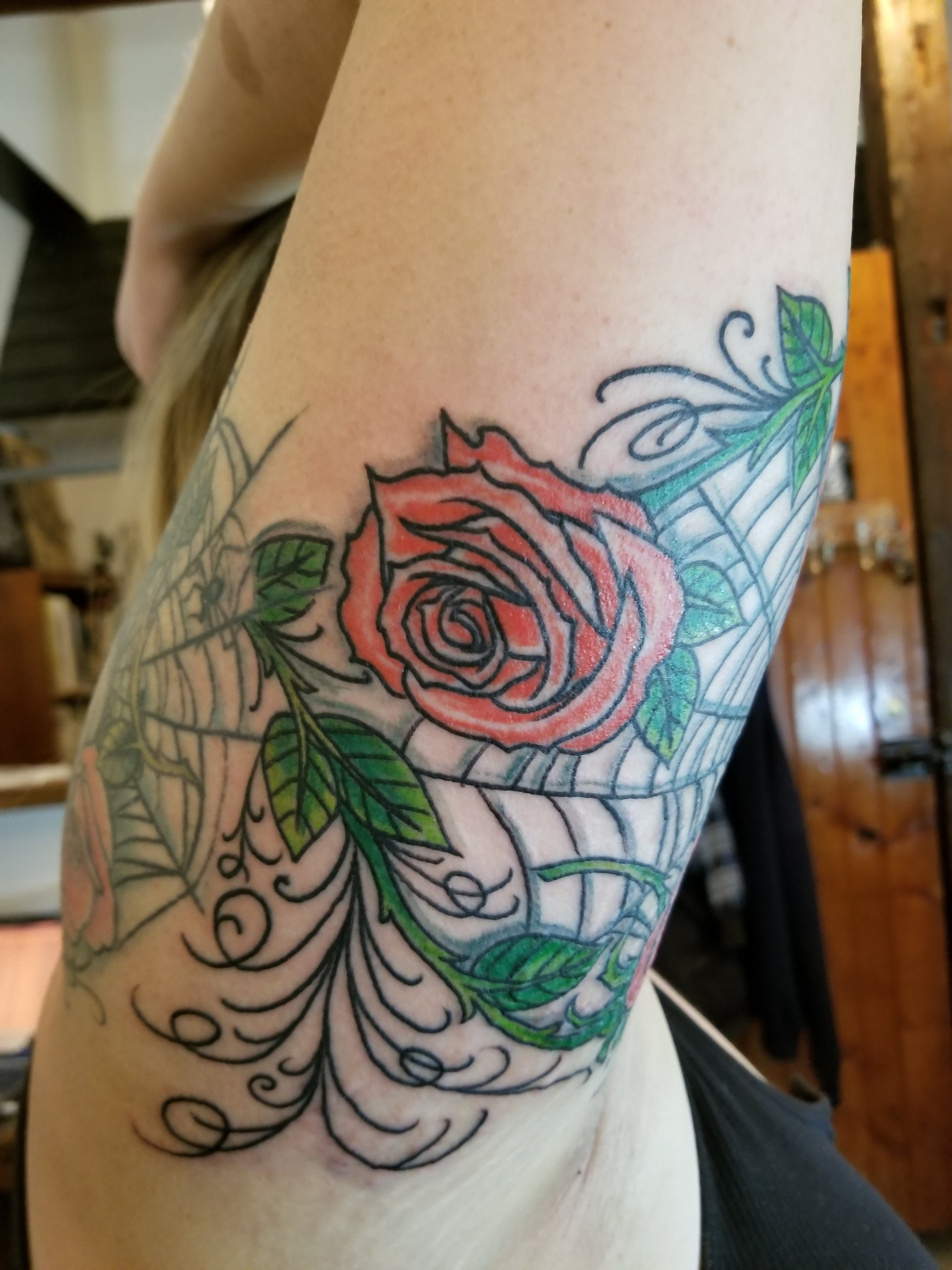 Roses and spider web