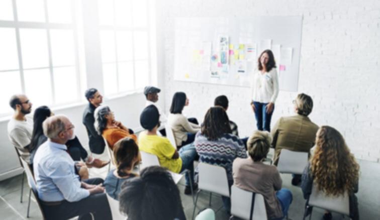 Workshops &Meeting Facilitation -
