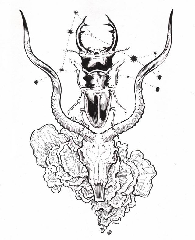 CROWNS 👑    #artofwarlick  #inkling #crown #horns #fungi