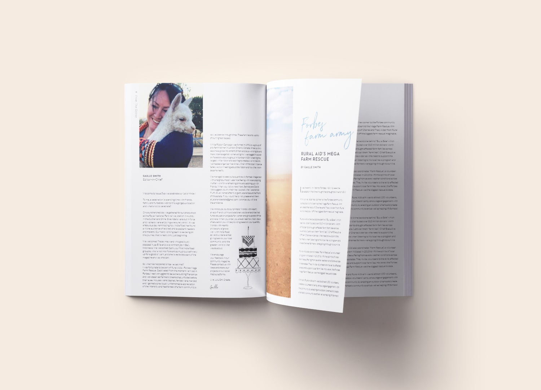 magazine illustration-min.jpg