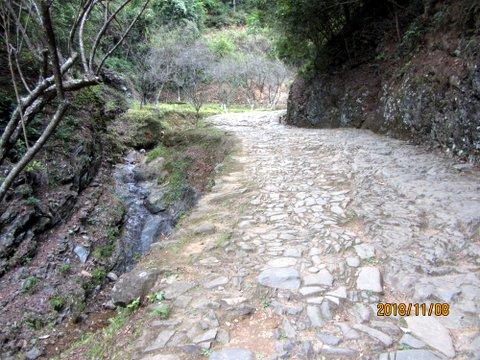 Ascending Plum Pass