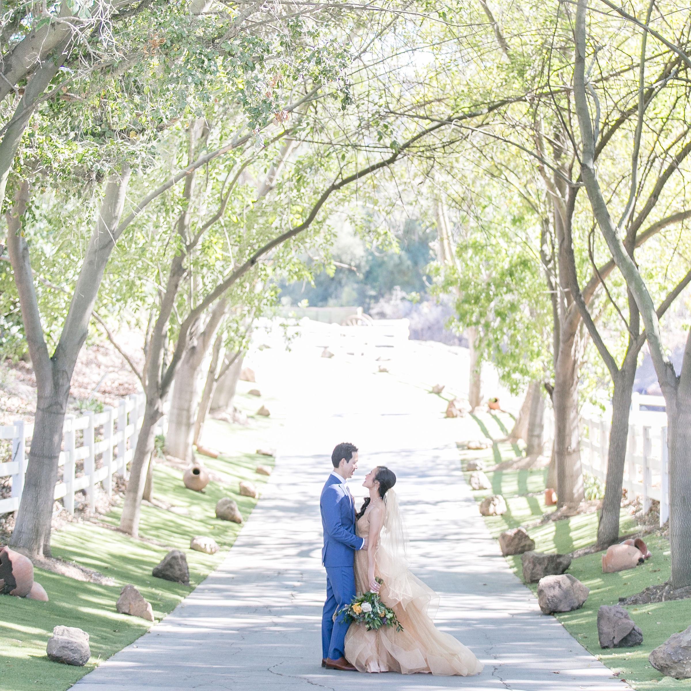 Melanie+Seiji-saddlerockranch-malibucaliforniawedding-couplesportraitsandweddingparty-0207.jpg