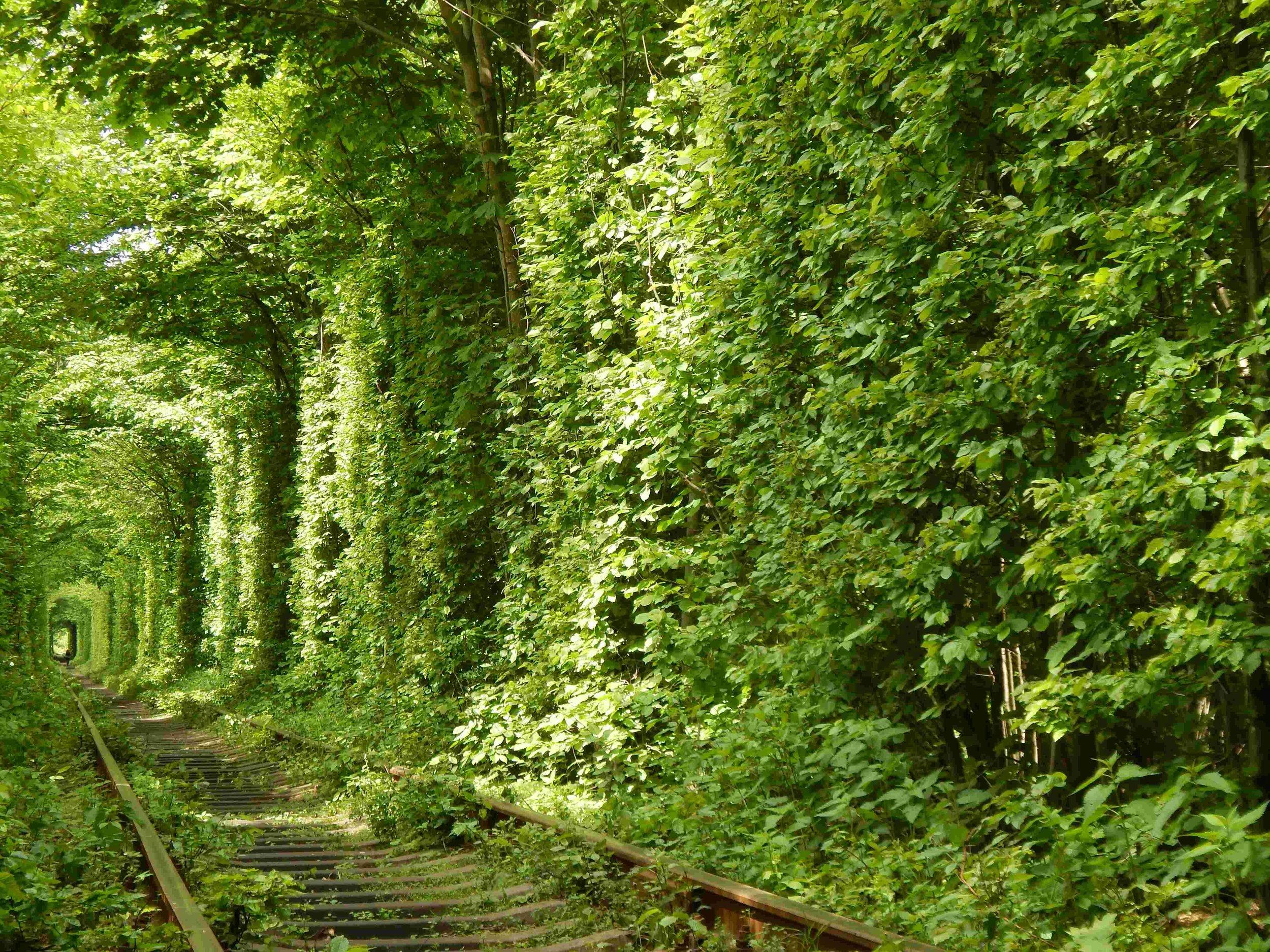 - The Tunnel of Love, Ukraine.