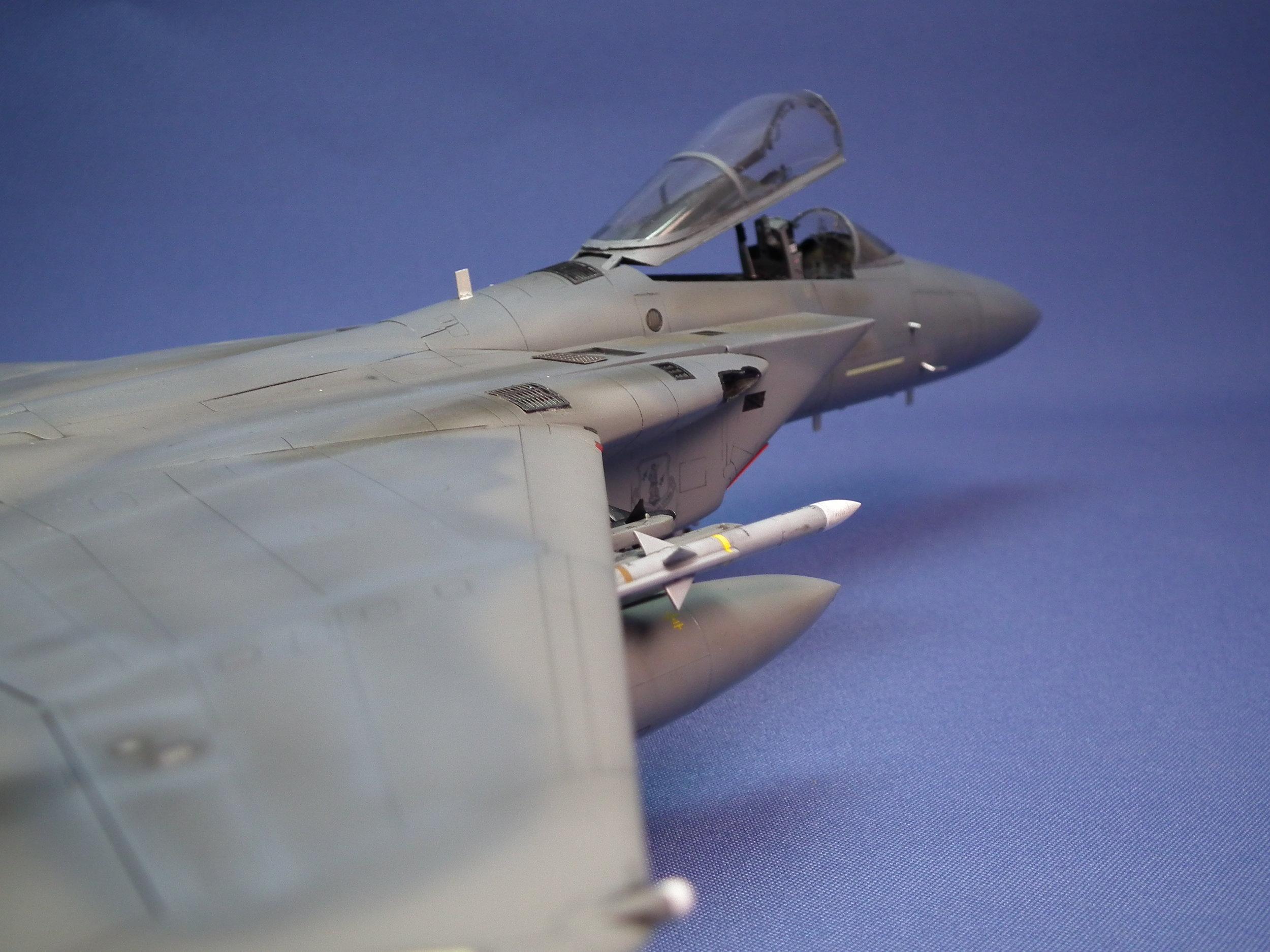 Eagle 15.JPG