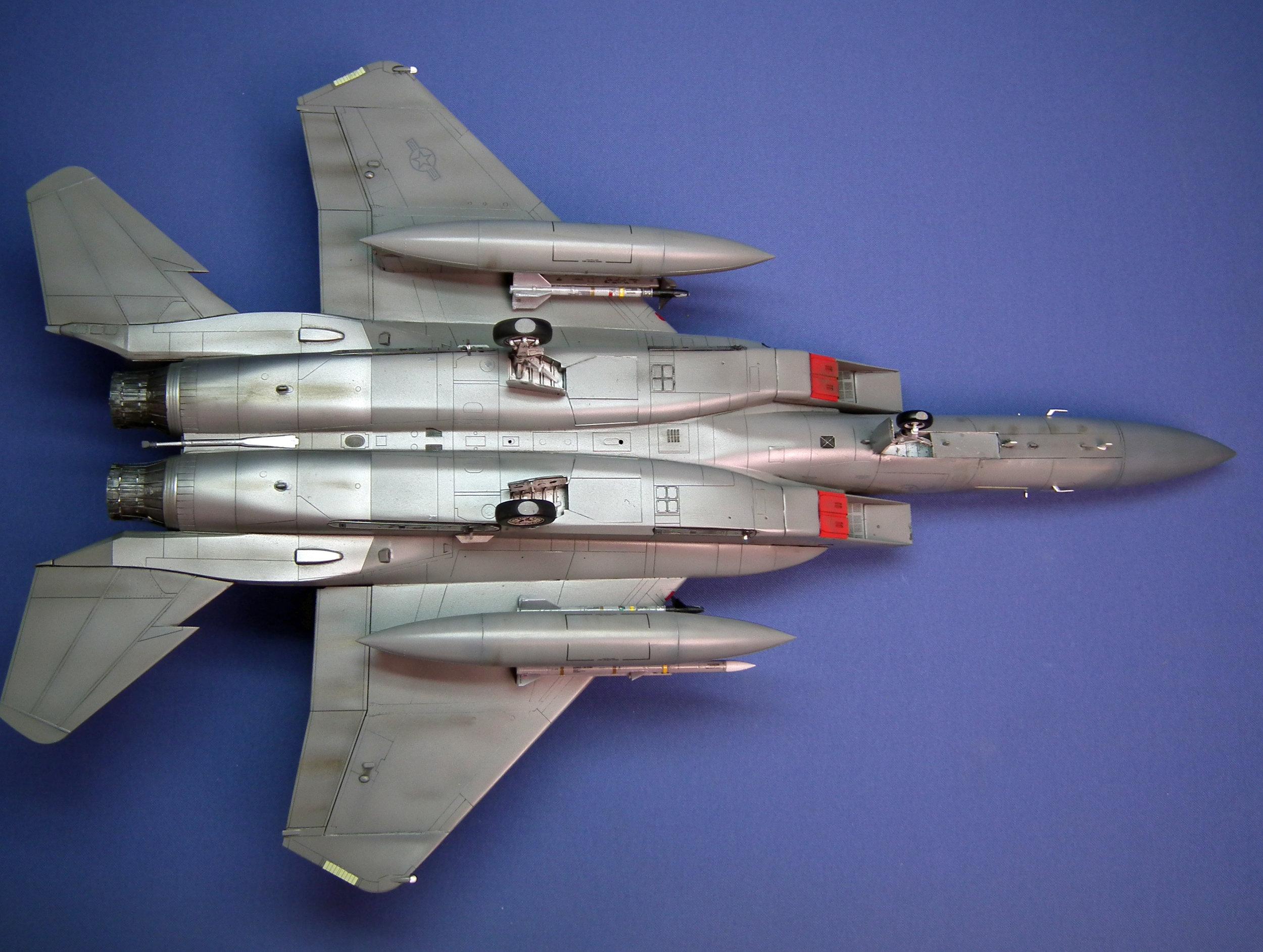 Eagle 19.JPG