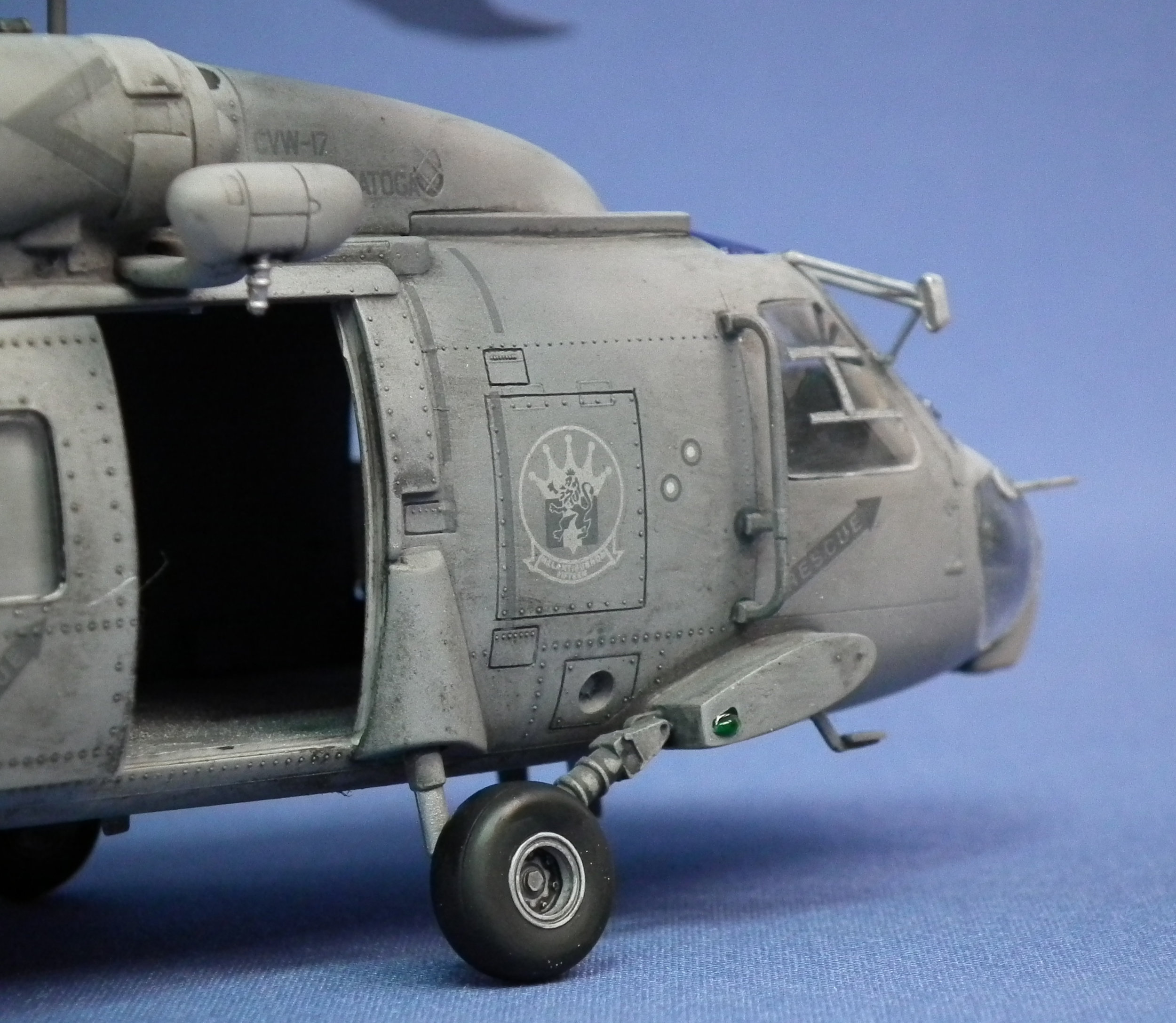 Seahawk 5.JPG
