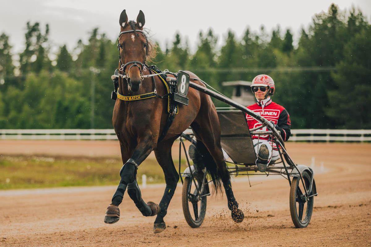 mercedes match - s. 24.5.2016isä Zola Bokoemä Princess Angelinaemänisä Credit Winner