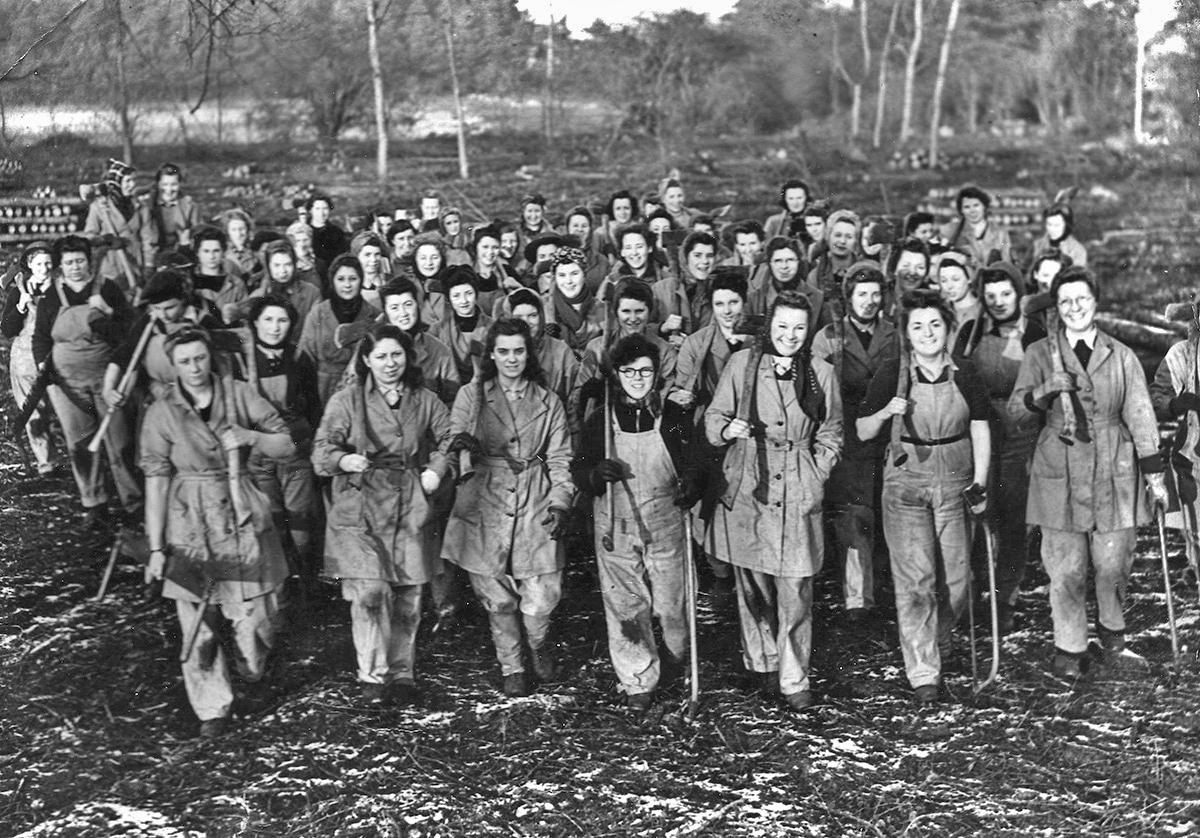 Female forestry workers, known as lumberjills, did vital work during the Second World War.
