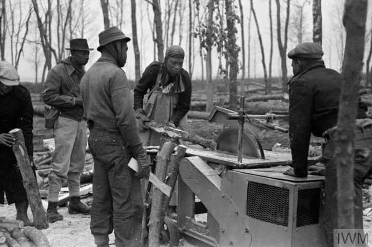 Members of the British Honduran Forestry Unit at work.