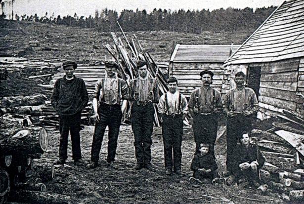 Lockhart's Mill, Bin Forest, 1919
