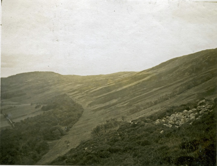 Drummond Hill Forest, Perthshire, 1924