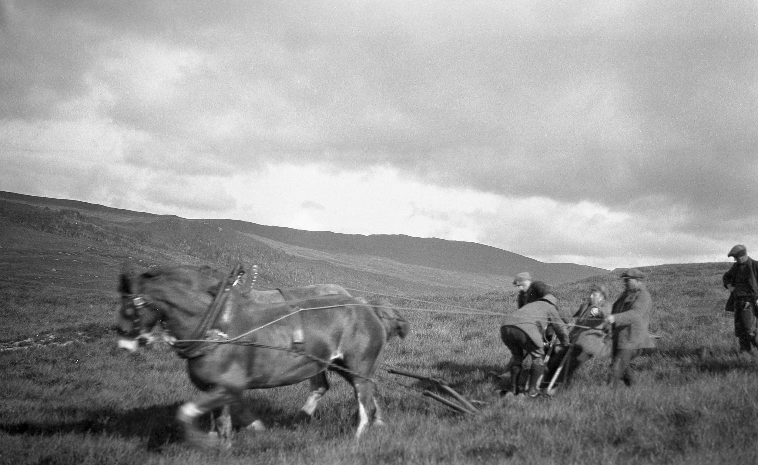Trial ploughing, 1927