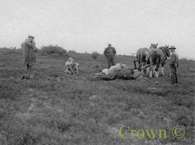 Sungrade Disc horse plough, 1937