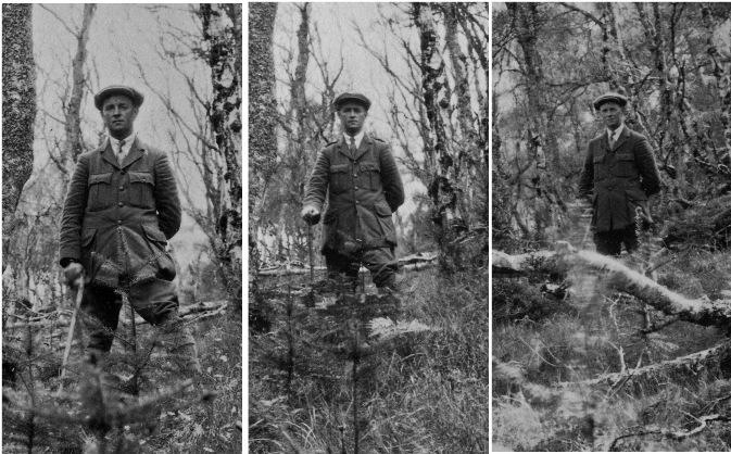 W McIntosh, Glenurquhart Forest, 1931