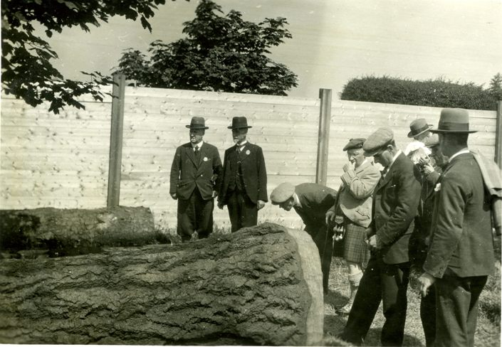 Forestry Commission employees examine a fir tree at the Highland & Agricultural Show, 1931 (Image:  Forestry Memories )