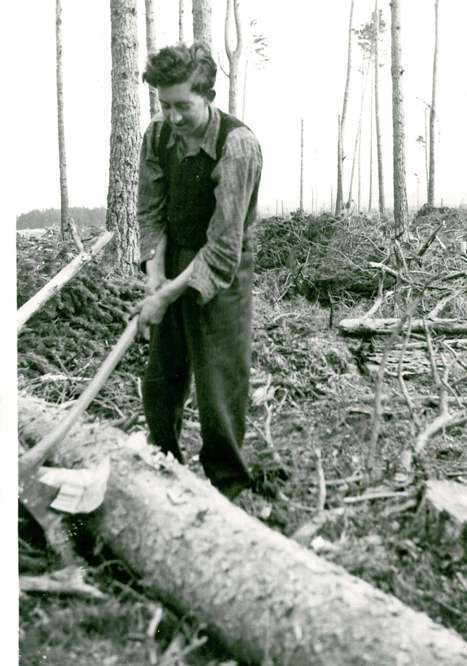 Manual felling, 1949