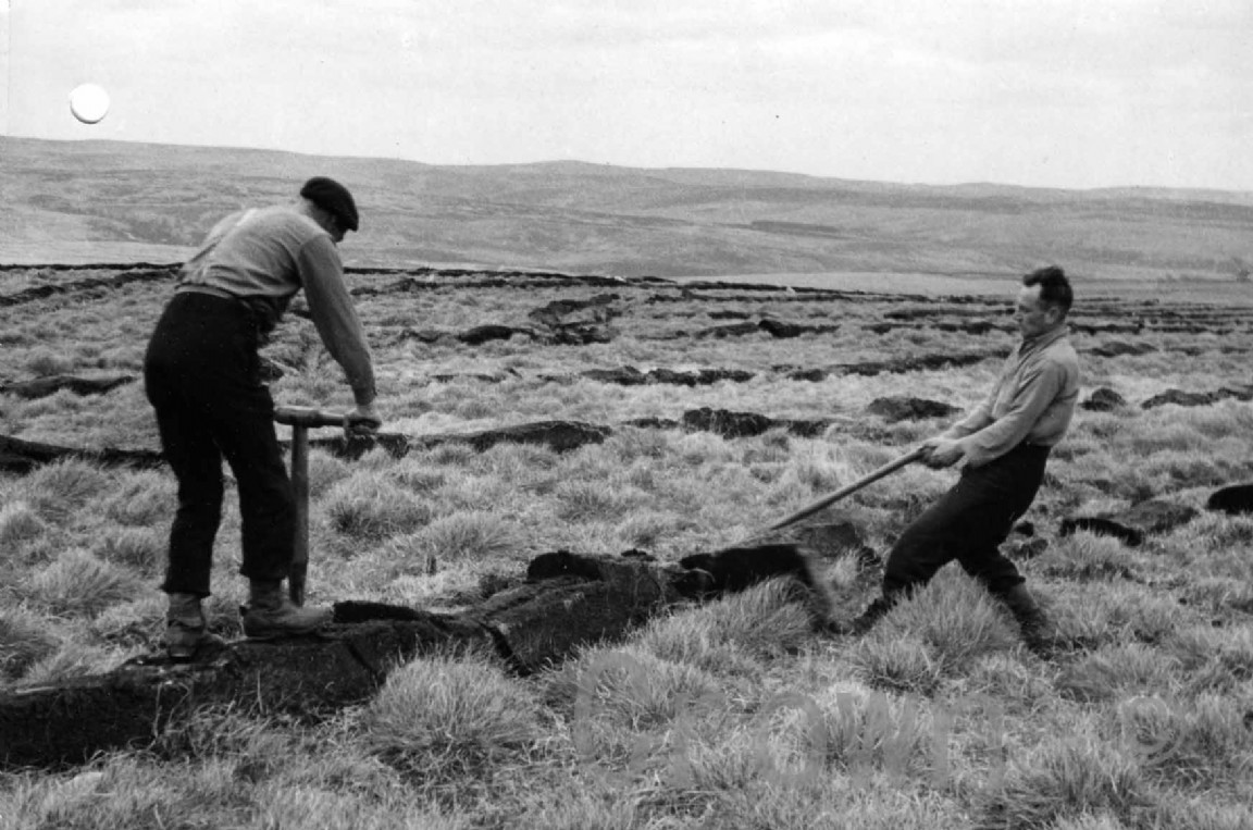 Manually spreading turfs, 1952