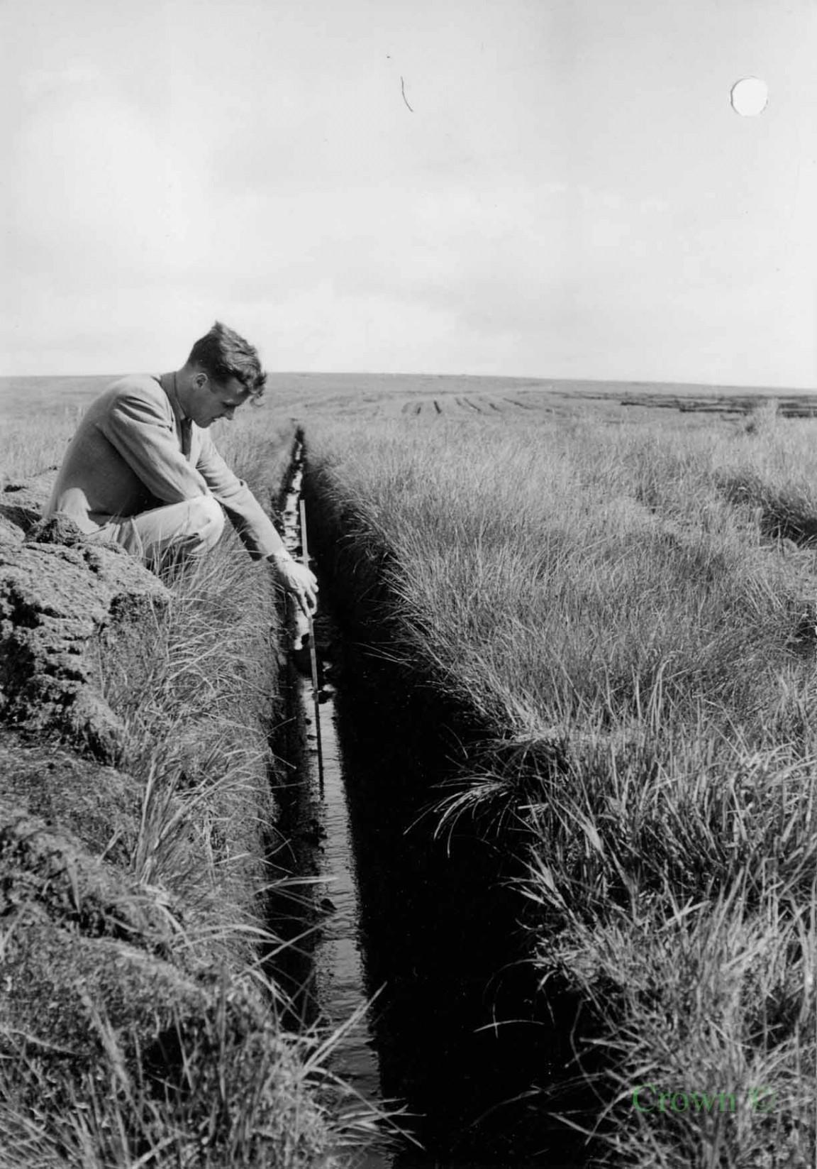Cuthbertson drain, Ae Forest, 1954
