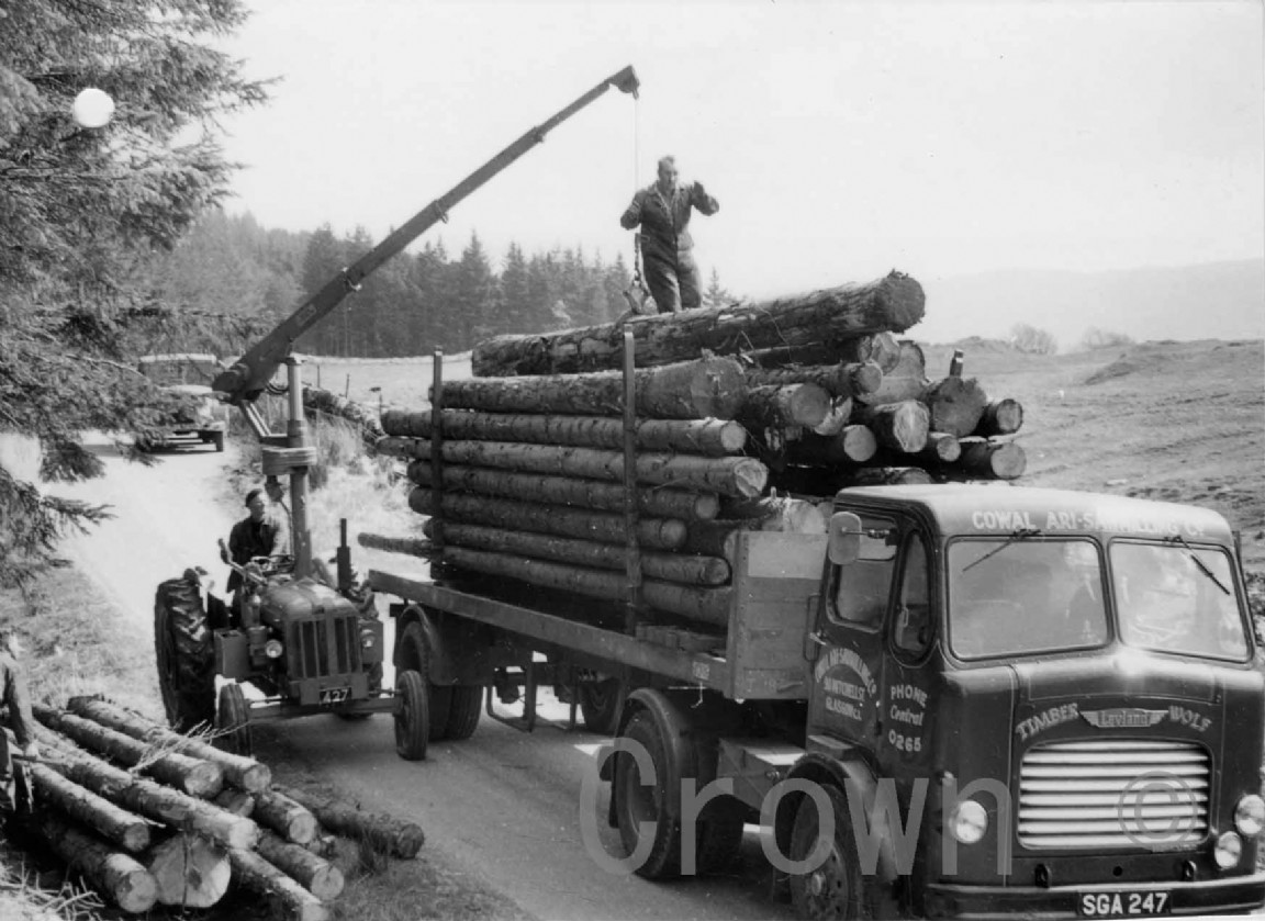 Loading logs at Inverliever forest