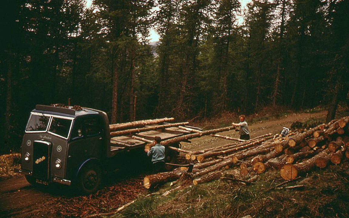 Manual loading with timber poles, 1955