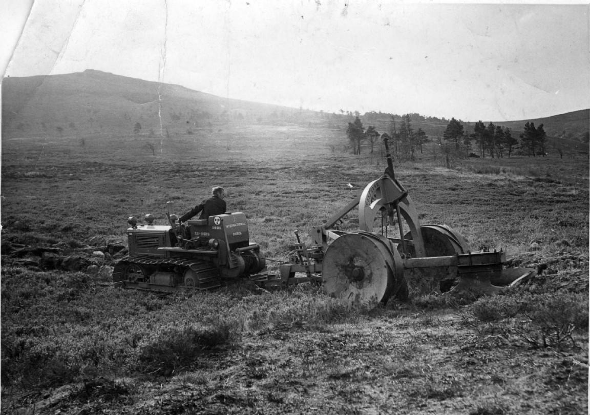 Ploughing at Bennachie, 1955