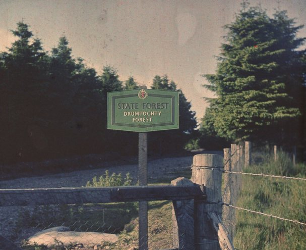 State Forest sign, Drumtochty, 1956