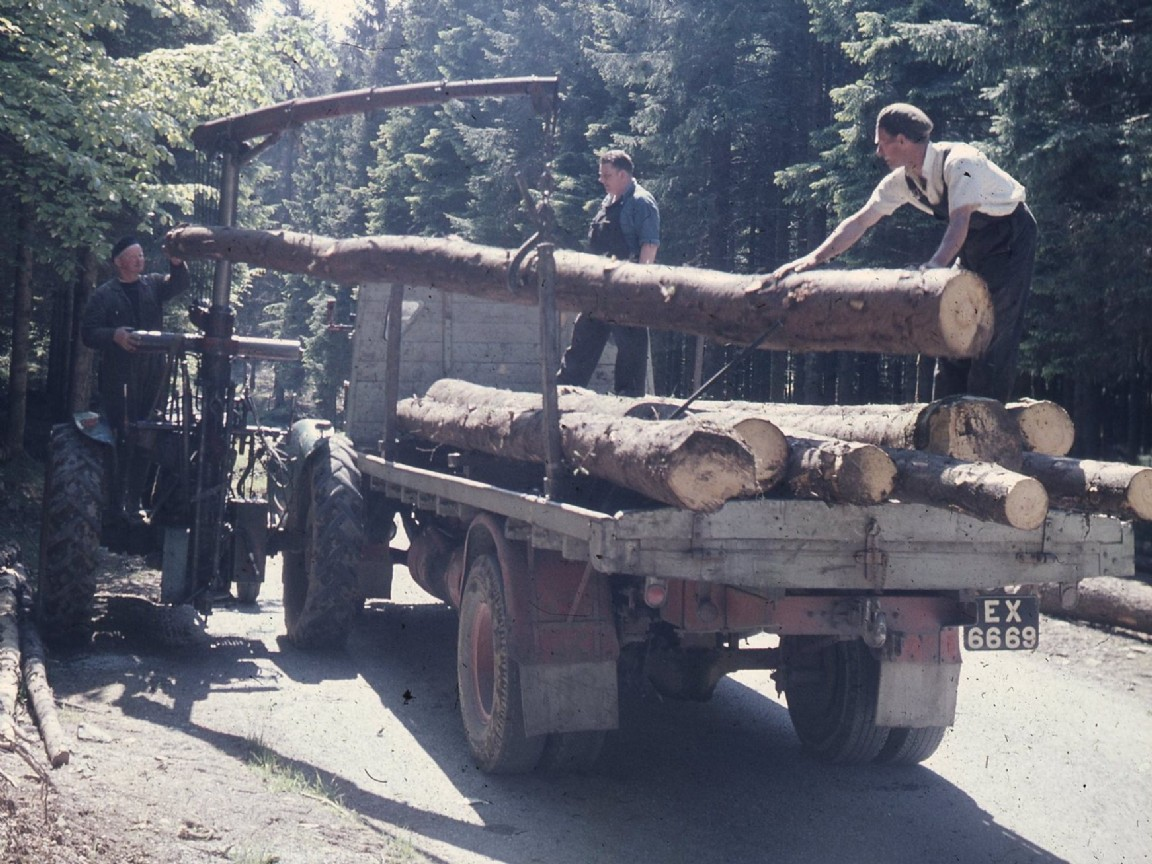 Ford Tractor loaded with logs, 1960