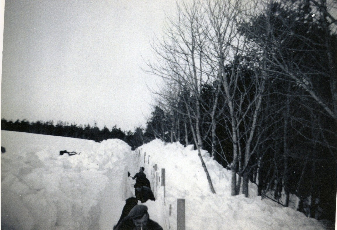 1962_Snow at Bin Forest.jpg