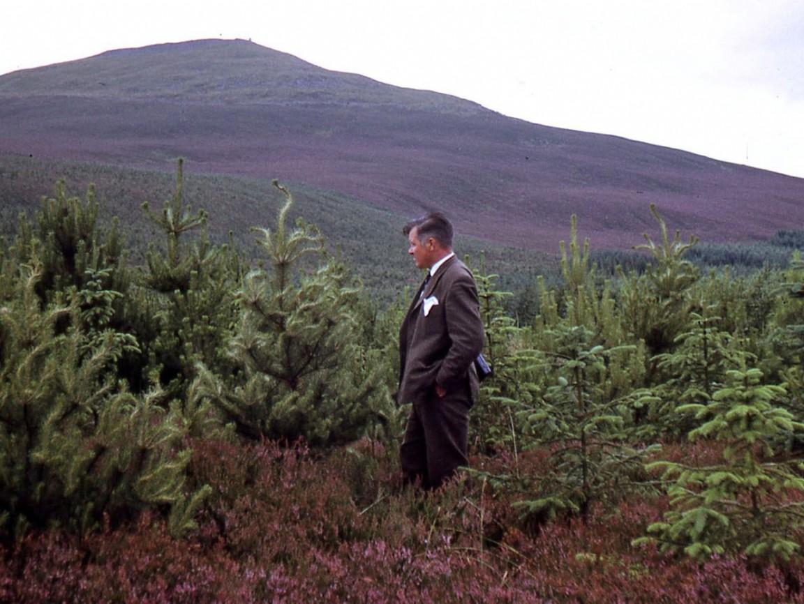 Inspecting trees at Clashindarroch, 1972