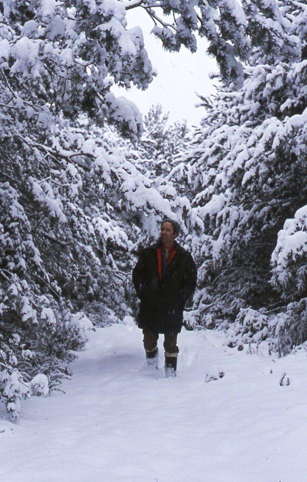 Culbin in the snow, 1974