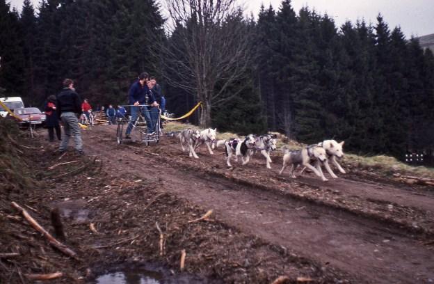 1990_Husky dog race.jpg