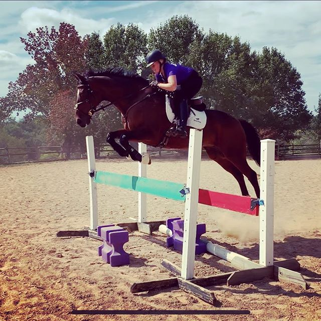 I am so excited to have the opportunity to not only ride Reggie, aka, Rafferty's Rules, but to have the privilege of taking him to an event! Thank you to Adrienne Classen @witsendeventing for letting me ride Reggie and take him to a show. And thank you to Julia Bulkeley @bulkeju8 for giving up a week of her lease and a show so I could take him to Stable View this weekend! ❤️ #raffertysrules #eventing