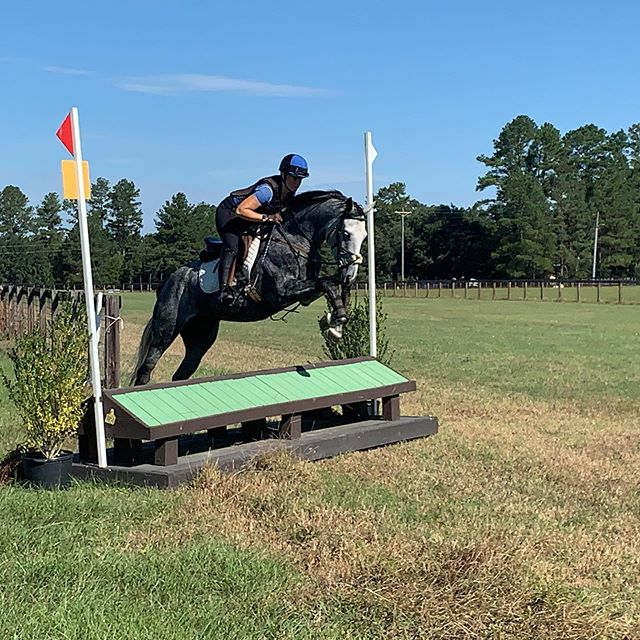 Great day of schooling at War Horse. Happy schooled both beginner novice show jumping and cross country fantastically. Ian got to have a little fun as well, schooling the novice show jumping before sand dancing tomorrow afternoon! @witsendeventing #royaltyhappenswe #sanddancingottb
