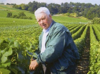 Pierre Jamain