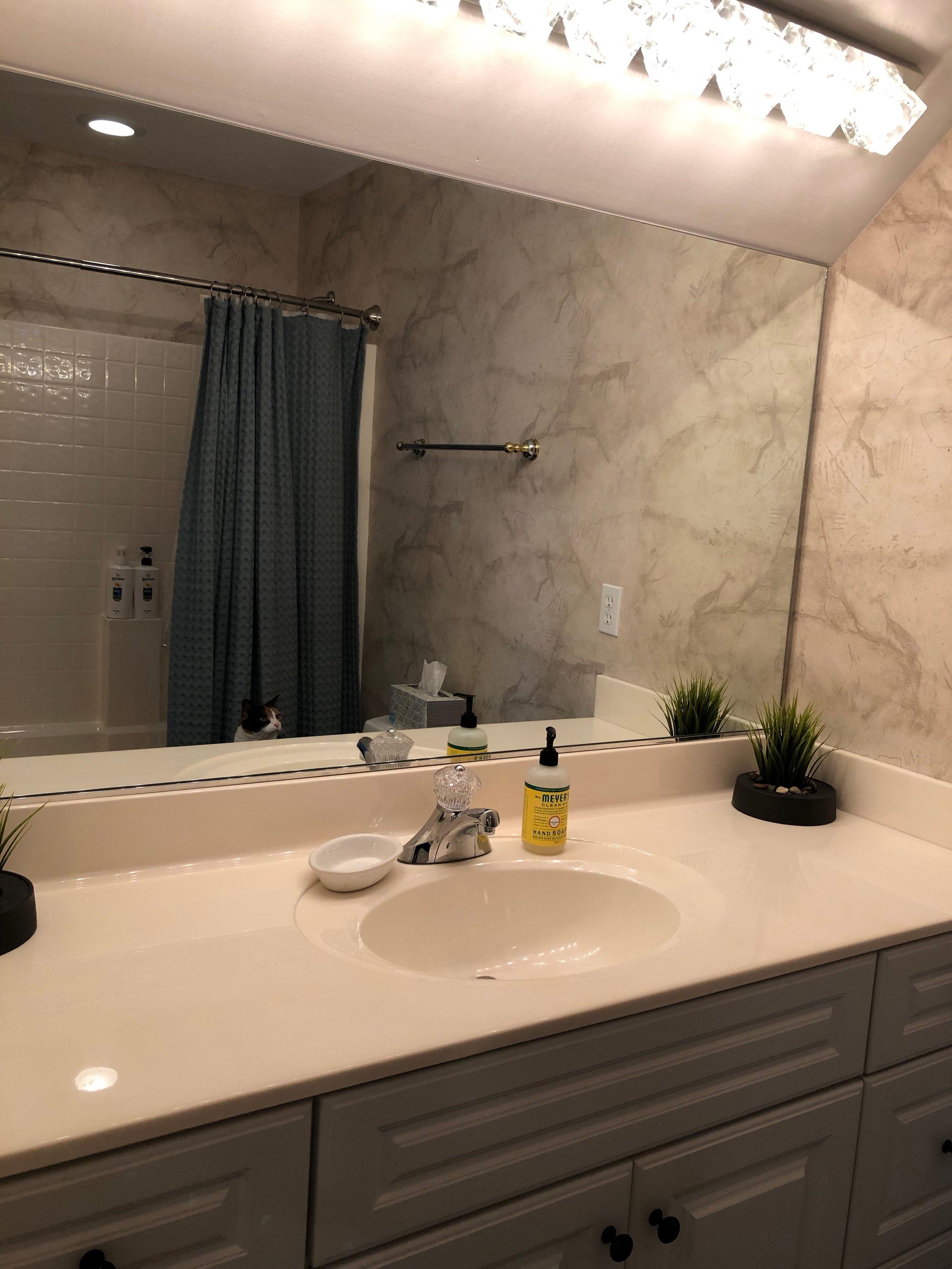 Frog Room Bath Room